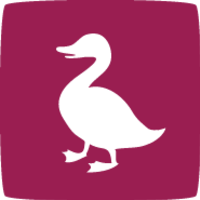 Alternatives to Ducksboard logo