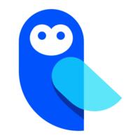 Log Owl logo