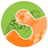 scikit-image logo