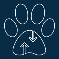 Alternatives to Paw logo
