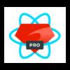 React on Rails Pro logo