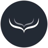 Alternatives to Hull logo