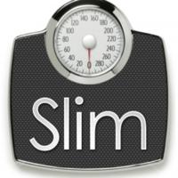 Slim Lang logo