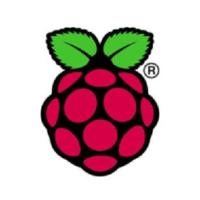 Alternatives to Raspbian logo