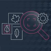 Amazon Rekognition Video logo