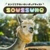 old-soussune