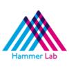 Hammer Lab