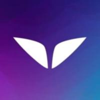 Mindvalley.com logo